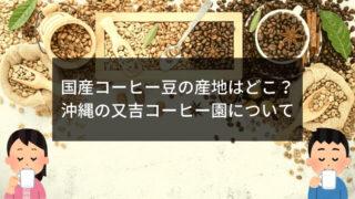 沖縄の又吉コーヒー園はどこ?アクセスと口コミまとめ 2/28日本のチカラ