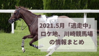 2021.5月「逃走中」ロケ地は川崎競馬場!子役やHIKAKIN・SEIKINが参加!