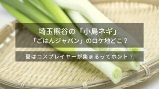 熊谷の小島ネギ、栽培地はどこ?ネギが甘い!矢田亜希子も大感激!SDGsに取り組む遠藤ファーム