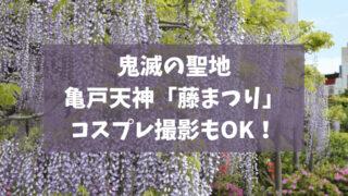 鬼滅の聖地「藤まつり」を亀戸天神で楽しむ!コスプレ撮影で映える!
