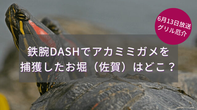 鉄腕DASHでアカミミガメを捕獲したお堀(佐賀)はどこ?6/13グリル厄介