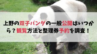 上野の双子パンダの一般公開はいつから?観覧方法と整理券予約を調査!