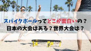 スパイクボールってどこが面白いの?日本の大会はある?世界大会に出る方法